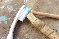 与现代牙刷的原始的牙刷miswak 库存照片