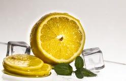 与玻璃和冰块的新鲜的切的柠檬 关闭 库存照片