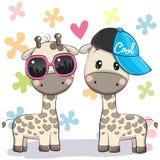 与玻璃和盖帽的两头逗人喜爱的长颈鹿 向量例证