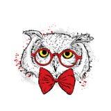 与玻璃和领带的逗人喜爱的猫头鹰 卡片或海报的传染媒介例证 在衣裳的印刷品 双翼飞机 时尚&样式 向量例证