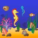 与珊瑚和浮动鱼的水下的世界 免版税图库摄影