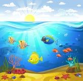 与珊瑚的海底 免版税库存图片