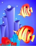 与珊瑚的鱼 免版税库存图片