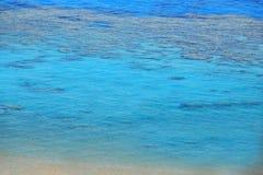 与珊瑚礁和绿松石海的海滩 免版税库存图片