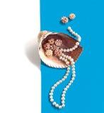 与珍珠的海壳成串珠状 免版税图库摄影