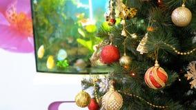 与球、装饰和一本诗歌选的圣诞树在屋子里面的水族馆前面 影视素材