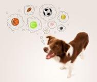 与球的逗人喜爱的狗在想法泡影 免版税库存照片