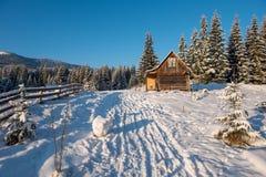与瑞士山中的牧人小屋的冬天woderland 库存图片