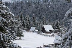 与瑞士山中的牧人小屋的冬天woderland 免版税图库摄影