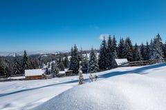 与瑞士山中的牧人小屋的冬天woderland 免版税库存图片