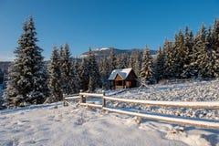 与瑞士山中的牧人小屋的冬天woderland 图库摄影