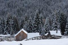 与瑞士山中的牧人小屋的冬天woderland 库存照片