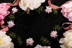 与瓣花的精美白色桃红色牡丹和在黑色的白色丝带 顶上的顶视图,平的位置 复制空间 免版税库存图片