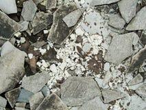 与瓦和gla的腐朽的被放弃的水泥大厦混乱 库存图片