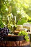 与瓶和杯的木桶白葡萄酒 库存图片