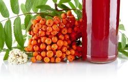 与瓶子的播种的橙色花楸浆果在白色的汁液 库存图片