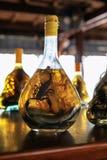 与瓶的亚洲纪念品店市场摊位蛇和天蝎座酒精酊 库存图片