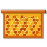 与甜金黄蜂窝的木制框架用在白色背景隔绝的蜂蜜 食物健康自然 向量动画片 库存图片