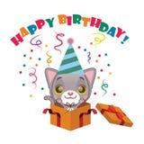 与生日快乐标志的逗人喜爱的灰色小猫 库存照片