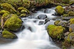 与生苔岩石和柔滑的水作用的瀑布 免版税库存照片