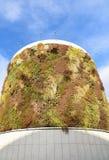 与生长在门面的植物的绿色大厦 生态和绿色生活在城市,城市环境概念 天空的公园,  免版税库存照片