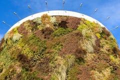 与生长在门面的植物的绿色大厦 生态和绿色生活在城市,城市环境概念 天空的公园,  库存照片