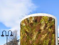 与生长在门面的植物的绿色大厦 生态和绿色生活在城市,城市环境概念 天空的公园,  图库摄影