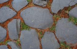 与生长在他们之间的草的石头 路Clivo的Argentario 库存图片