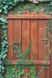 与生长小的植物的老木门  库存图片