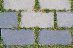 与生长沿它的联合背景的绿草的灰色混凝土路面 免版税图库摄影