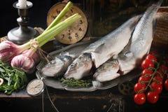 与生鱼的静物画 免版税库存图片