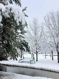 与用在结冰的池塘的第一蓬松雪报道的庭院摇摆的美好的冬天风景 免版税库存图片