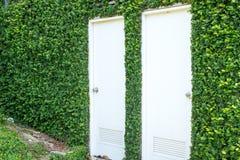 与用常春藤盖的一个石墙的白色门 免版税图库摄影
