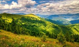 与用花装饰的草甸和山峰的被日光照射了风景 免版税库存照片