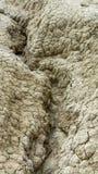 与用镇压报道的干地面的特写镜头 自然旱田 库存图片