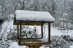 与用雪盖的垂悬的烟肉外皮的鸟饲养者 库存照片