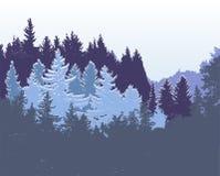 与用雪盖的针叶树的冬天全景森林风景 库存图片