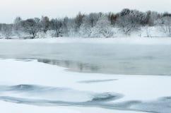 与用霜盖的树的风景 免版税库存照片