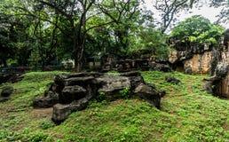 与由水泥做的岩石的小的人为小山围拢由在雅加达拍的树照片印度尼西亚 库存照片