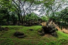 与由水泥做的岩石的小的人为小山围拢由在雅加达拍的树照片印度尼西亚 图库摄影