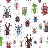与甲虫的无缝的背景 图库摄影