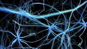 与电冲动的神经元网络 飞行通过脑子 库存例证