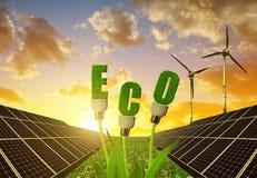 与电灯泡的太阳电池板在反对日落天空的植物 免版税库存照片