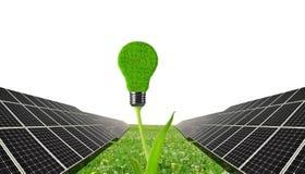 与电灯泡的太阳电池板在植物 免版税图库摄影