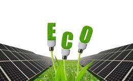 与电灯泡的太阳电池板在植物 免版税库存图片