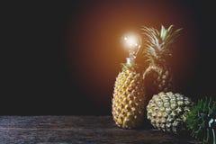 与电灯泡,维生素和有益于的新鲜的杉木苹果健康 免版税图库摄影