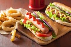 与番茄酱芥末菜和炸薯条的热狗 库存图片