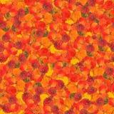与白杨木明亮的多彩多姿的叶子的无缝的背景  免版税库存图片