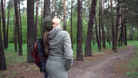 与白桦的美好的风景 桦树树丛 美好的全景 影视素材