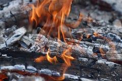 与白灰和红色火焰的灼烧的煤炭 库存图片